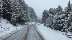 La nevada ha arribat a tot el Pirineu, com es pot veure en aquesta imatge de la carretera de Vallter