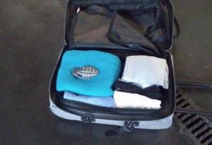 Imatge de la maleta amb la granada de mà falsa que portava la dona a Sants.