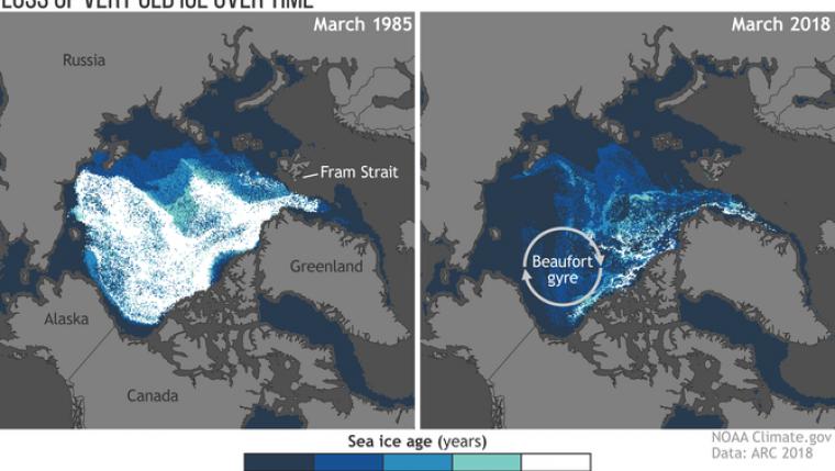 Imatge comparativa del gel que hi havia a l'Àrtic el març del 1985 i el març d'aquest any