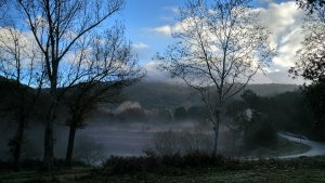 Aquest dimecres segueix el temps de boires fredes i sol a gran part del territori