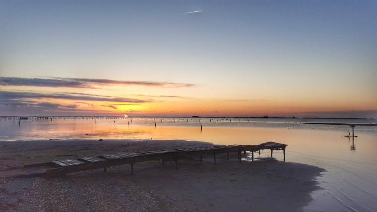 Imatge de la sortida de sol aquest divendres al matí al Delta de l'Ebre