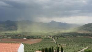Imatge de núvols de pol·len que aquests dies es poden veure per tot arreu