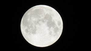 L'última lluna plena de la primavera també serà fàcil d'observar la propera nit