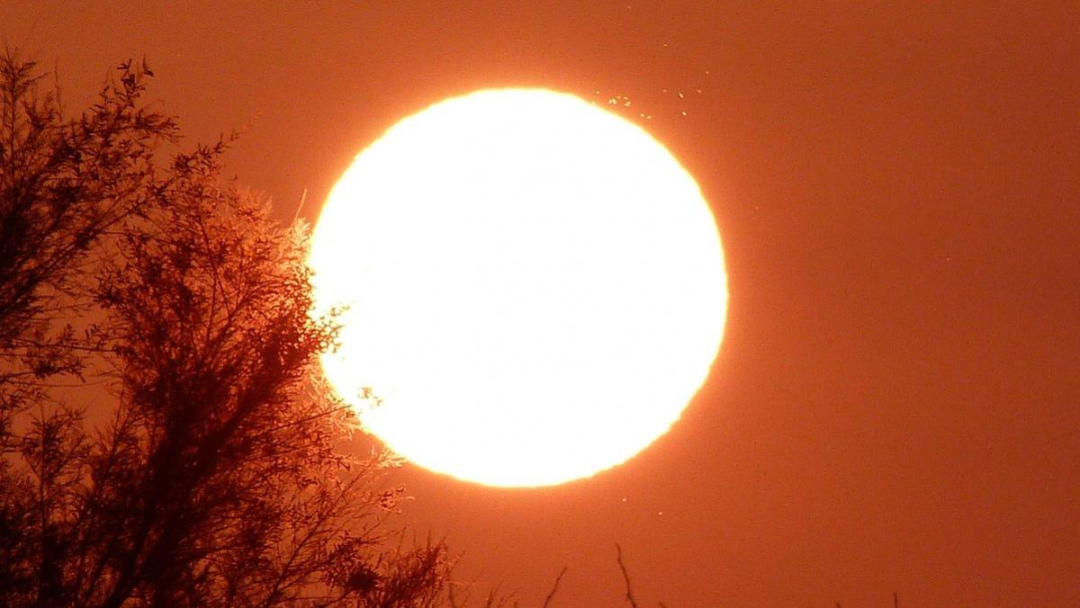 El sol i la calor seran els clars protagonistes del dijous