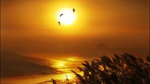 El sol i la calor seran els protagonistes dels propers dies