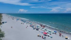 Les platges dels Estats Units pateixen cada vegada més la presència de bacteris carnívors