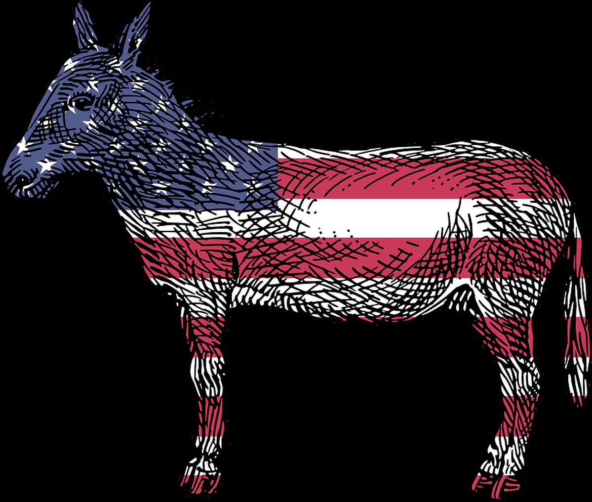 El ruc americà, símbol del Partit Demòcrata.