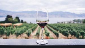 El vi d'Oporto és una de les novetats de la cadena de supermercats valenciana