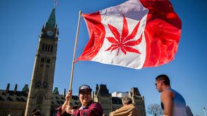 La legalització de marihuana al Canadà i als Estats Units ha disparat l'economia