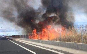 Incendi carretera