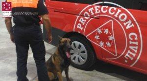 Efectius de la Unitat Canina participen en la cerca de l'home