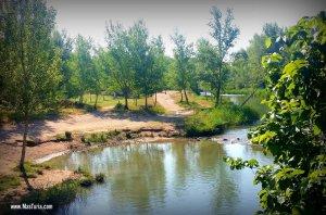 Imatge d'arxiu del Riu Túria al seu pas per Pedralba