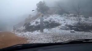 Imatge de la neu al Paratge de la Font Roja