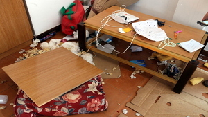 La víctima estava estesa en terra i el pis estava totalment regirat