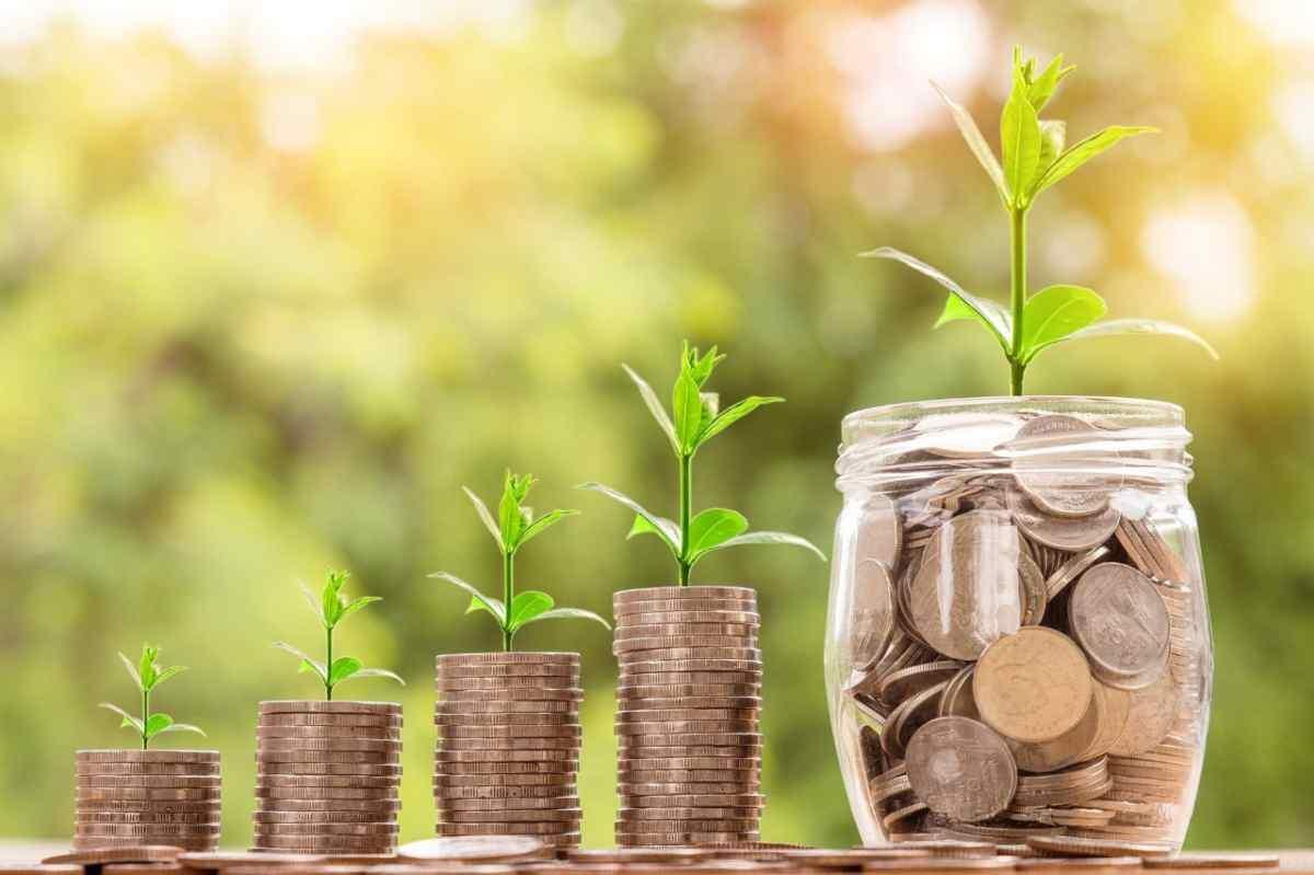 Muntons de diners amb plantes al capdamunt