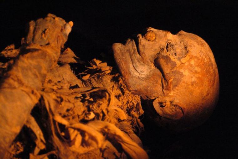 hatshepsut mummy