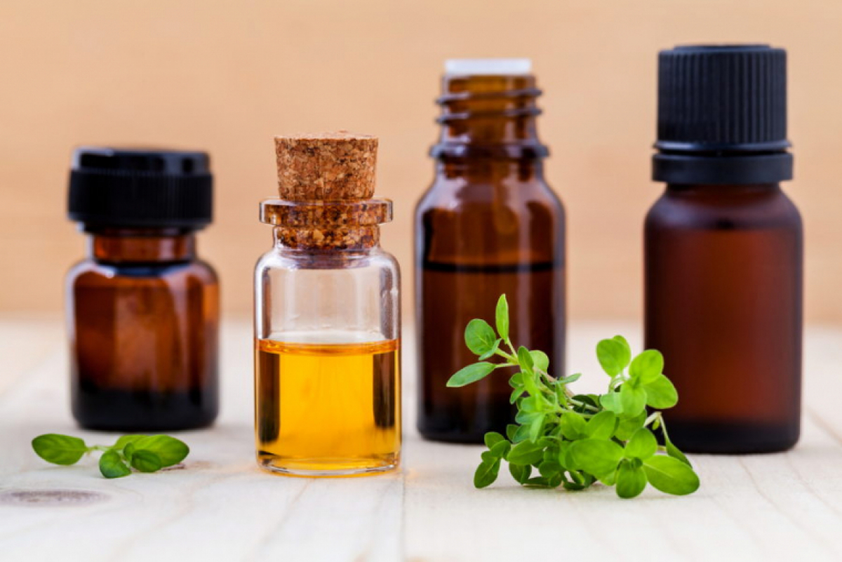 Thyme: Benefits of this Magic Plant