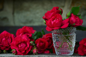 Red rose symbolizes love and passion.