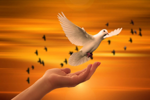 Spirituality: what it is and all that's behind it