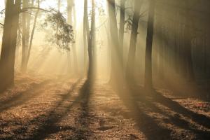 A spiritual awakening is the enlightenment of what was hidden away