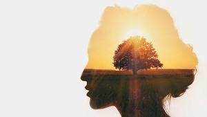 Deepak Chopra and His 21-Day Abundance Meditation Challenge.