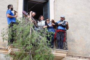 Branca de pi al balcó de l'Ajuntament de Santa Maria