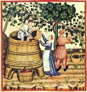 El vi era el substitut natural de l'aigua, sobre tot a les ciutats i als pobles