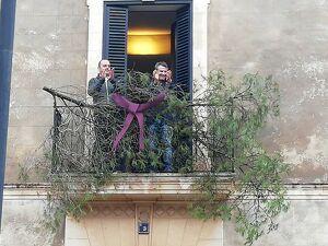 El brot de pi en el balcó de l'Ajuntament santamarier ens diu que comencen les festes