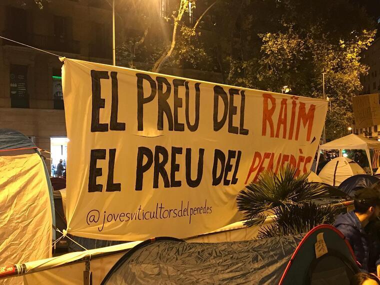 Les revindicacions dels Joves Viticultors del Penedès també són presents a la protesta dels estudiants
