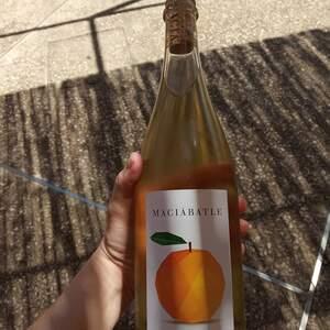 El nou organ wine de Macia Batle