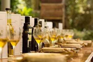 L'Oli d'Eivissa ara estarà protegit i els seu origen garantit