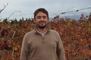 Matthieu Pichenot, el nou enòleg de Finca Biniagual