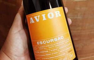 Avior d'Escursac, un dels vins del projecte més personals de Caty Ribot