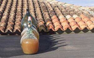 E vi sec fet amb paciència que Jaume de Puntiró ha deixat fent-se a poc a poc al terrat