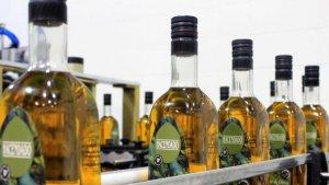 Aceite de oliva de Hacendado, Mercadona