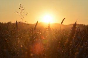 El sol se impodrá en gran parte del país este miércoles
