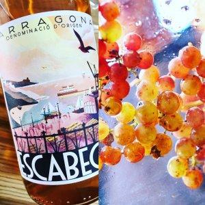 Escabeces, un vi rosat de Vilabella del Camp