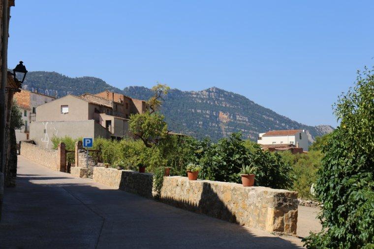 El Montsant, sempre visible des del carrers airejats del poble.