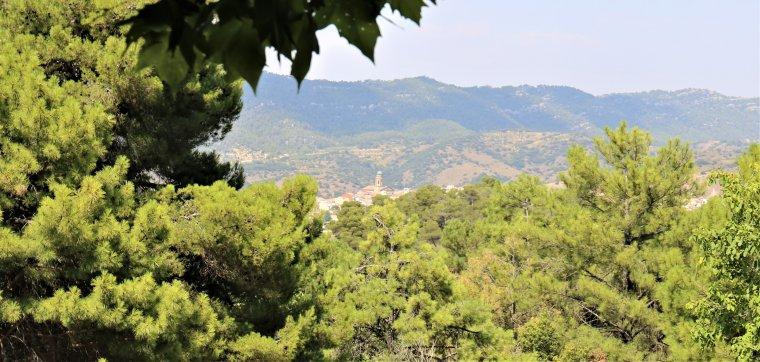 El campanar d'Ulldemolins, al fons de la vall, entre boscúries