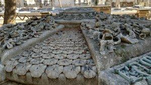 La tomba de la família Pratdesaba està guarnida em motius florals