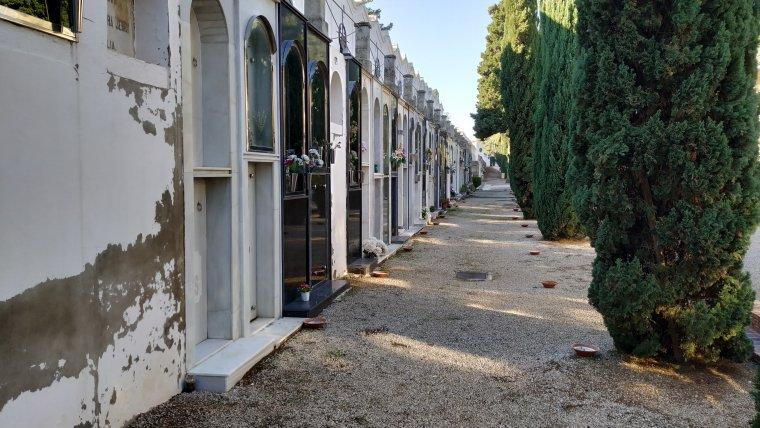 Nínxols i xiprers del Cementiri de Reus