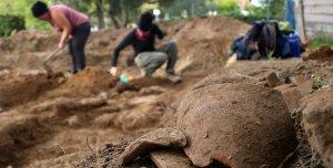 Algunes de les restes trobades als terrenys de Cubelles.