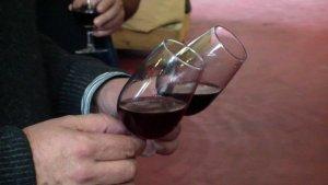 El celler experimental Mas dels Frares ha elaborat un vi tal com ho feien els ibers