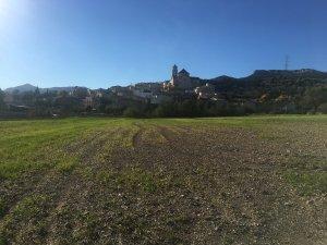 El poble de Figuerola del Camp