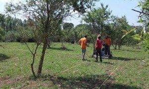 Tècnics fent les prospeccions amb georadar als terrenys on hi el jaciment iber de Banyeres.