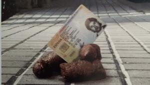 L'Arboç analitzarà l'ADN dels excrements de gos que es trobin al carrer.