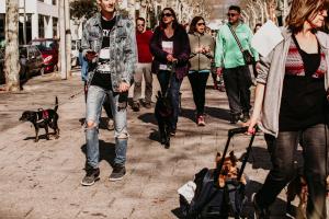 Passejada de gossos bestial 2019