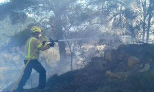 Un bomber treballant en les tasques d'extinció de l'incendi de Solivella.