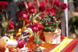 Sant Jordi 2019: la gent de Tarragona surt a comprar llibres i roses