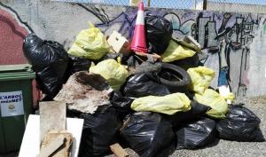 Els residus recollits a l'Arboç.